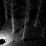 Terrestrial laser scanning